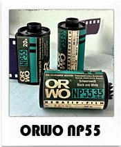 ORWO NP55